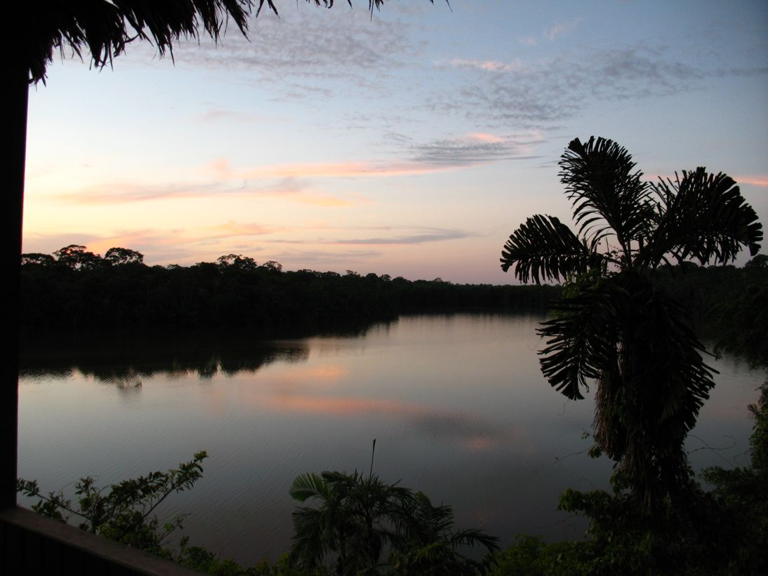 Jungle sunset on the river
